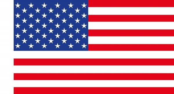 Papierfahnen USA 50 Stück
