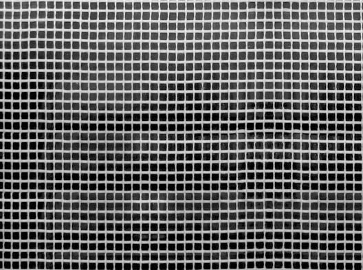 Teppich Anti Rutsch Verlegegitter 25m Rolle 100cm Breite