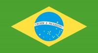 Papierfahnen Brasilien 50 Stück