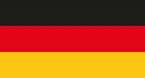 Papierfahnen Deutschland 50 Stück